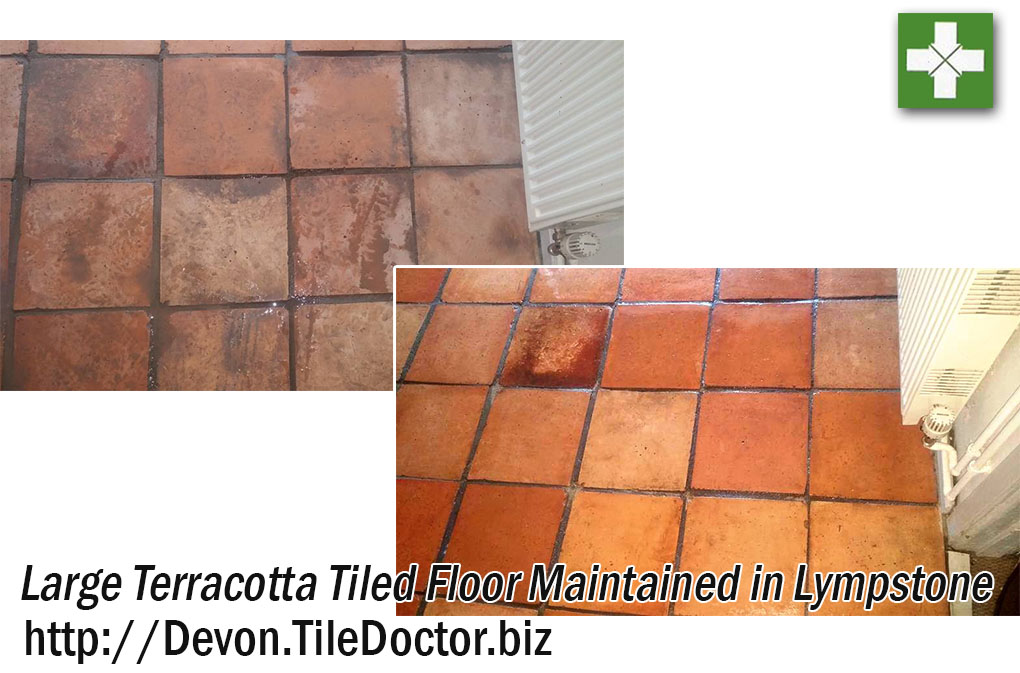 Terracotta Tiled Floor Before and After Cleaning in Lympstone